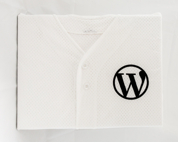 WordPress Baseball
